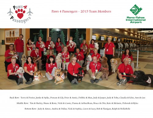 Paws 4 Passengers - 2015 Team Photo